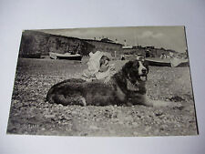 K251 - c1905 ST BERNARD DOG & BABY on Beach POSTCARD - Silverette Tucks RP