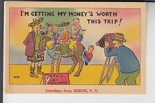 Pony Picture Comic Greetings from Berne  NY New York    3828