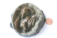 Replik Sinosaurius Baby im Ei I-0072/I