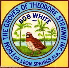 De Leon Springs Florida Bob White Bird Orange Citrus Fruit Crate Label Art Print
