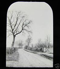 Glass Magic Lantern Slide AUTUMN C1900 A COUNTRY LANE