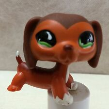 Littlest Pet Shop #675 Brown Dachshund Puppy Green Eyes *RARE* LPS USA SELLER