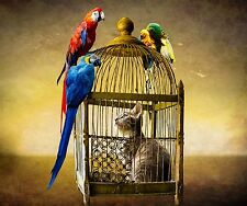 PARROTS ON A BIRD CAGE CAT INSIDE FUNNY COMPUTER MOUSE PAD  7 x 9