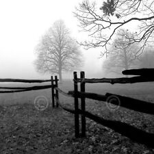 PHOTO ART PRINT - Fence in the Mist by Harold Silverman 16x16 B/W Country Poster