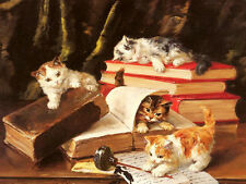 Art Oil painting animals Kittens Playing on a Desk with books ink on canvas 36""