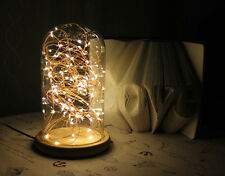LED Firework Glass Cover Wood Base Touch Switch Table Desk Light Lamp Oa