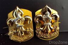 Pair of British Military Army The King's Regiment Collar Dogs / Badges