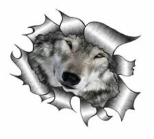 Ripped Torn Metal Look Design With Wolf Wolves Eyes Face vinyl car sticker Decal