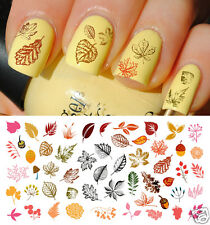Autumn - Fall  Leaves Nail Art Waterslide Decals Set #3 - Salon Quality!