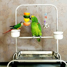 12cm Stainless Steel Skewer Toy Treat Bird Parrot Food Fruit Holder Stick