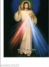 Divine Mercy 8 x 10 Jesus Christ Our Lord Catholic Picture Faustina Charity