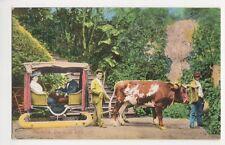 Madeira, Carro de Bois Postcard, B129