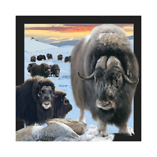Worth Keeping 3D Lenticular Post Card - MUSK OX - #059
