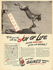 1947 vintage AD  GAINES MEAL Dog Food  Boxer jumps in lake 022014
