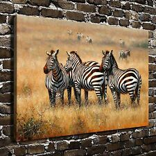 African Savannah Zebra Paintings HD Print on Canvas Home Decor Wall Art Pictures