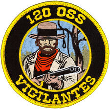 USAF 120th OPERATIONS SUPPORT SQUADRON PATCH