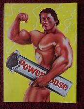 1974 Magazine Art Page ~ Bodybuilder Arnold Schwarzenegger by David Willardson