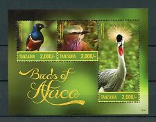 Tanzania 2015 MNH Birds of Africa 3v M/S II Cranes Starlings Rollers Stamps