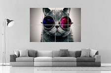 CHAT AVEC LUNETTES CAT WITH GLASSES  Wall Art Poster Grand format A0 Large Print