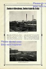 Zuckerfabrik Zeitz XXL Reklame 1925 Zuckerrüben Werbung ad +