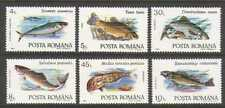 Romania 1992 Tench/Perch/Mullet/Fish/Marine/Nature/Fishing 6v set (n20791)