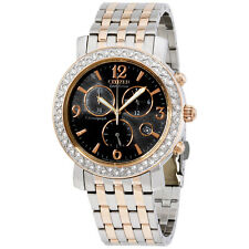 "Citizen ""Eco-Drive"" Stainless Steel Swarovski Crystal Women's Watch FB1296-51H"