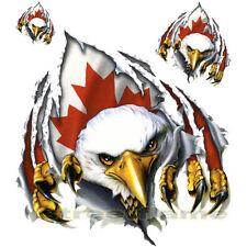 RIP N TEAR EAGLE Decal / Sticker Canada - TRUCK CAR RV TRAILER Helmet Scooter
