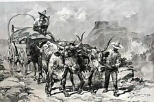 Dan Smith FREIGHTING SALT in NEW MEXICO 1891 OXEN TEAM  Antique Matted Print