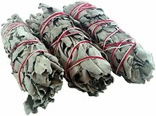 Set of 3 4-Inch Dried White Sage Native American Sacred Ritual Smudge Sticks