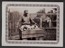 VINTAGE WORKING HUNTING DOGS PUPPYS GERMAN SHORTHAIRED POINTER OLD PHOTO