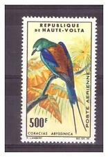HAUTE VOLTA. PA   N°  20  . 500  F ROLLIER D'ABYSSINIE   NEUF    *. SUPERBE .
