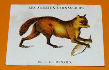 CHROMO 1932 CASINO N°80 LES ANIMAUX CARNASSIERS LE RENARD