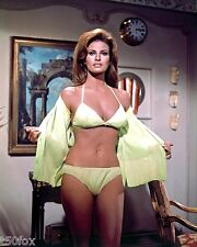 1960-1969 RAQUEL WELCH color glamour classic photo (Celebrities & Musicians)