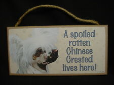 CHINESE CRESTED A Spoiled Rotten DOG picture SIGN wood HANGING PLAQUE puppy K9