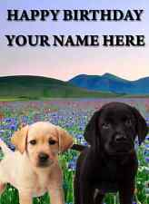Labrador Pups  card Happy Birthday A5 Personalised Greeting Card pid255
