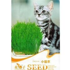 FD1063 Cat Grass Seed For Your Cat Food Pet Food Pet Grass Seed 1 Bag 200 Seeds1
