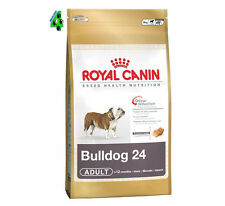 ROYAL CANIN BULLDOG inglese ADULT 24 12 KG CANE DOG CROCCHETTE SACCO