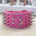 """New 3"""" Wide 4 Rows Spiked Studded Leather Dog Collar Pitbull Terrier Size M L XL"""