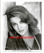 Vintage Ann-Margret GORGEOUS SEXY '64 KITTEN WITH WHIP Publicity Portrait