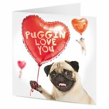 'PUGGIN LOVE YOU' funny Pug dog with balloons Valentine Birthday card