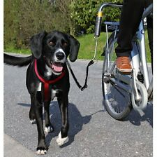 Biker-Set safe leashing on a bike All dog sizes sudden tugs softened by spring