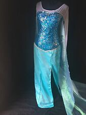 Elsa Costume Adult Dress Frozen Custom To Your Size Disney Princess Inspired