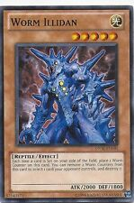 Worm 50 Card Lot - Worm Hope - Worm Falco - Queen - King - NM - Yugioh