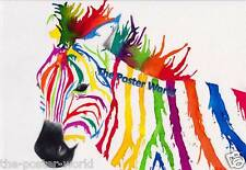 Zebra watercolour Wildlife Picture Poster Home Art Print Wall Decor New H1