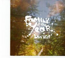 (DZ160) Family Of The Year, Buried - 2013 DJ CD