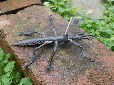 Australian replica plastic model bug  LORD HOWE ISLAND STICK INSECT