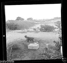 Portrait enfant jouant boîte lait Nestlé - Négatif photo ancien an 1950-60