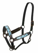 Leather Belt Style Halter w/ TURQUOISE Painted Filigree Tooling! NEW HORSE TACK!