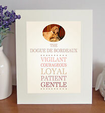 "Dogue de Bordeaux 10"" x 8"" Free Standing Breed Traits Picture Mount Fun Gift"