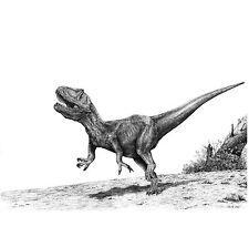Foto di dinosauro. Allosauro. NUOVO FIRMATO poster stampa B/N Disegno a matita